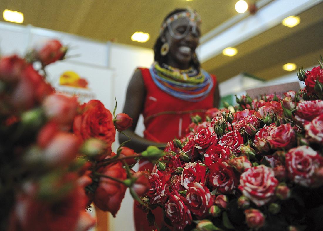 Exposición internacional de flores