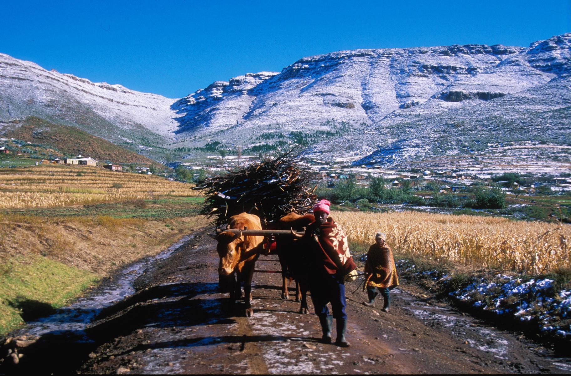 Campesino durante el invierno de Lesoto. Fotografía: Di Jones (http://bit.ly/2dGDqve)