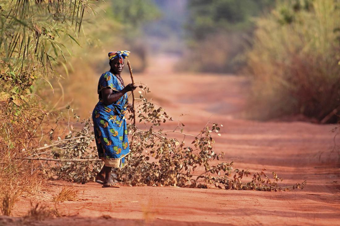 Una mujer recoge ramas en un camino del interior de Gambia / Foto: Getty Images
